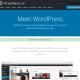 WordPress hjemmesider og opdateringer - OKEIwebbureau - Hvad er WordPress