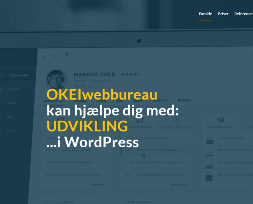 WordPress Udvikling af koder - OKEIwebbureau